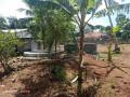 jaffna-kopay-land-for-sale-small-1