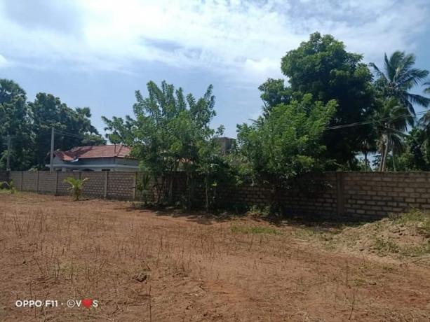 jaffna-kopay-land-for-sale-big-3
