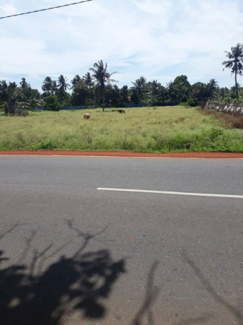 maruthanarmadam-urumpirai-road-side-land-for-sale-big-0