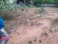 jaffna-kopay-land-for-sale-small-3