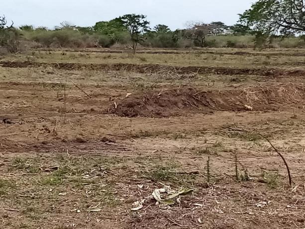 mannar-paddy-land-for-sale-big-1