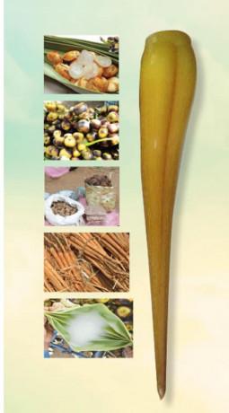 palmyra-tuber-for-sales-big-1
