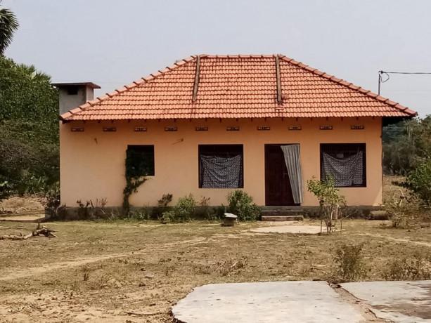 palai-kilinochi-house-for-sale-big-1
