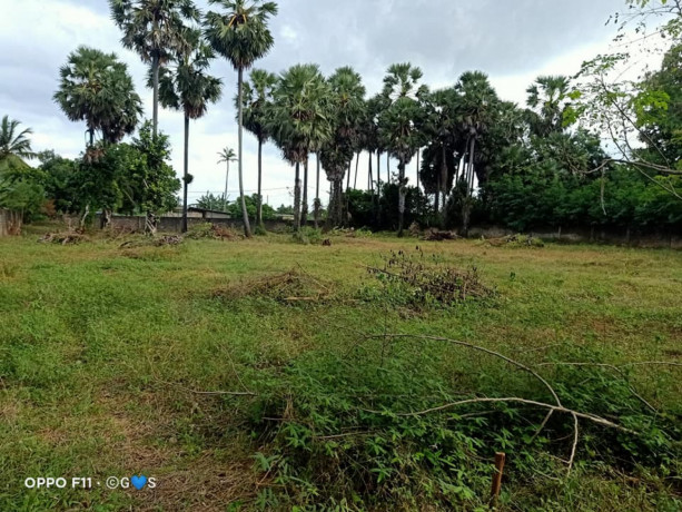 manipay-land-and-house-for-sale-big-0
