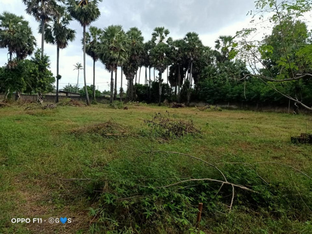 manipay-land-and-house-for-sale-big-2