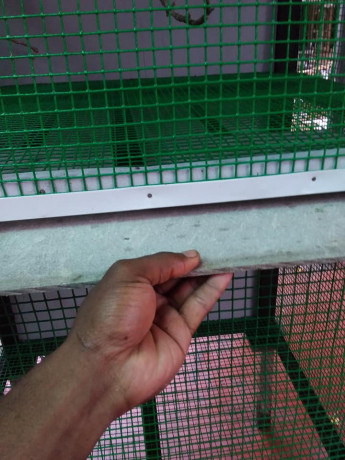 birds-cage-for-sales-big-2
