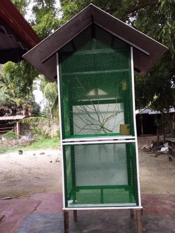 birds-cage-for-sales-big-1