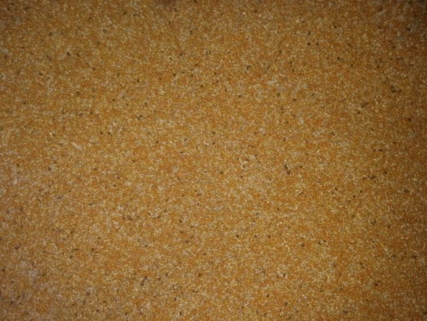 foxtail-millet-thinai-for-sale-in-jaffna-big-0