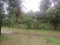 land-for-sale-in-jaffna-madduvil-small-1