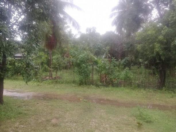 land-for-sale-in-jaffna-madduvil-big-1