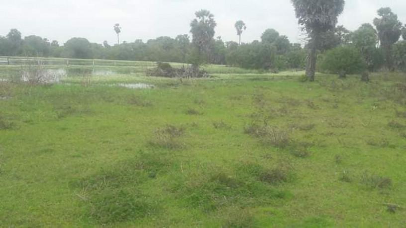 land-for-sale-in-kilinochchi-big-3