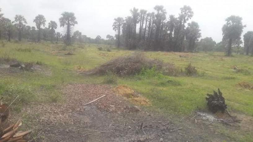 land-for-sale-in-kilinochchi-big-0