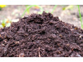 natural-compost-for-sale-small-0