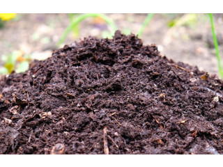Natural Compost for sale