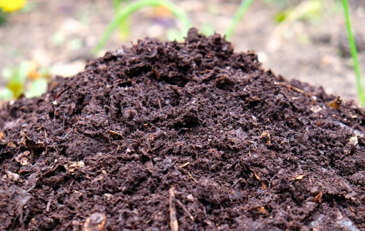 natural-compost-for-sale-big-0