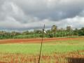 farm-land-for-sale-in-jaffna-punnalaikkadduvan-small-0