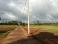 farm-land-for-sale-in-jaffna-punnalaikkadduvan-small-3