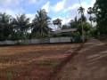 farm-land-for-sale-in-jaffna-punnalaikkadduvan-small-1