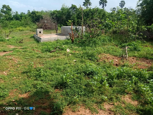 house-for-sale-in-tellippalai-big-4