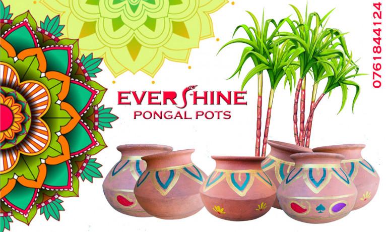 thai-pongal-pots-sale-in-jaffna-big-1