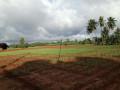 land-for-sale-in-urelu-jaffna-small-2