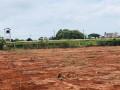 land-for-sale-in-maviddapuram-small-1