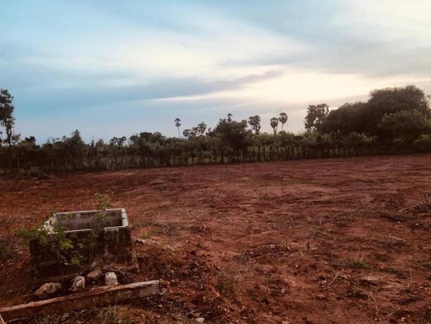 land-for-sale-in-maviddapuram-big-2