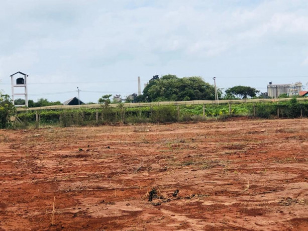 land-for-sale-in-maviddapuram-big-1