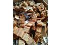 dried-fish-sale-in-jaffna-small-2