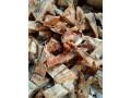 dried-fish-sale-in-jaffna-small-1