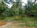 land-for-sale-in-mirusuvil-small-0