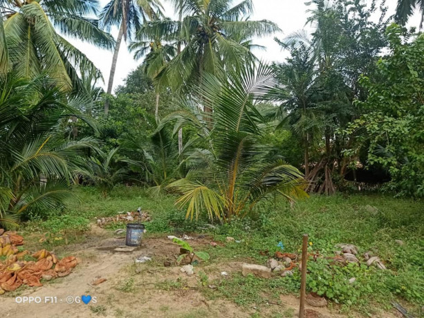 land-for-sale-in-mirusuvil-big-0