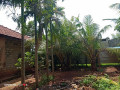 house-for-sale-in-jaffna-small-2