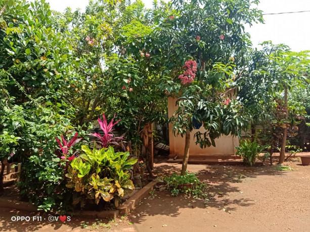 house-for-sale-in-jaffna-big-3