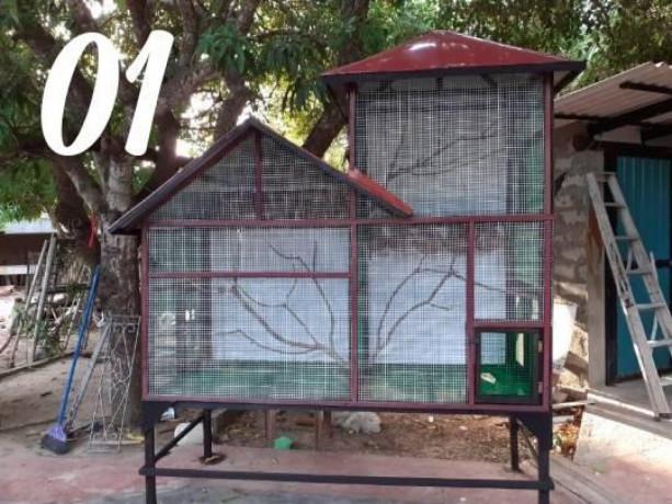 all-kind-of-pets-cages-making-in-jaffna-big-4