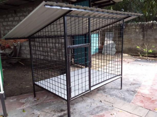 all-kind-of-pets-cages-making-in-jaffna-big-3