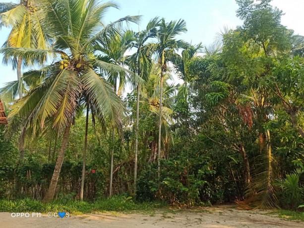 house-for-sale-in-jaffna-puttur-big-1
