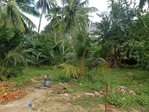 house-for-sale-in-mirusuvil-big-3