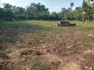 Land for sale in Jaffna puthur