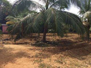 Land for sale in Jaffna iyakachchi