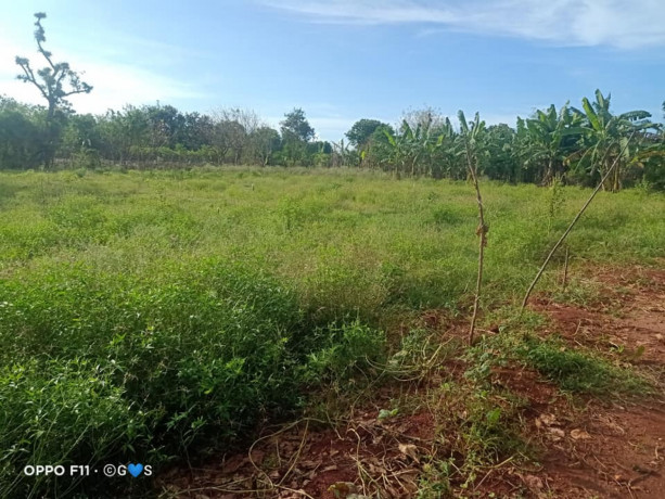 land-with-house-for-sale-in-maviddapuram-big-1