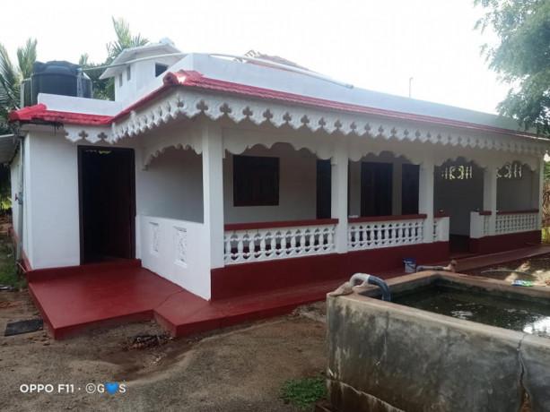 land-with-house-for-sale-in-maviddapuram-big-0