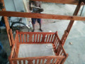 wooden-baby-cradle-for-sale-in-jaffna-small-2