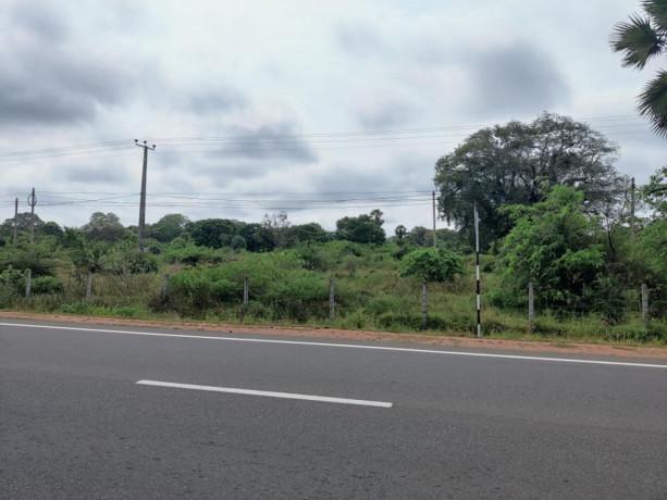 2-acre-land-for-sale-in-vavuniya-big-1
