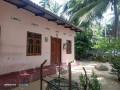 house-for-sale-in-jaffna-kodikamam-small-0