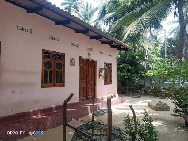 house-for-sale-in-jaffna-kodikamam-big-0