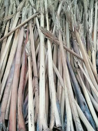 palm-bat-for-sale-in-jaffna-big-1