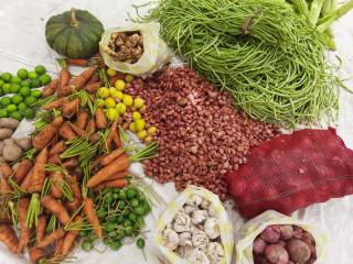 Vegetables at your doorstep northern sri lanka