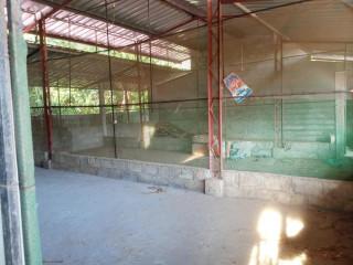 Jaffna evinai farm land for sale