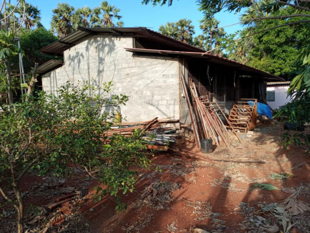 jaffna-evinai-farm-land-for-sale-big-1